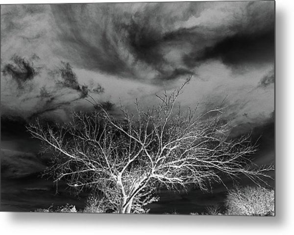 Desolate Feel Metal Print