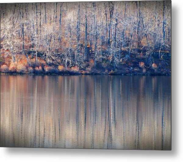 Desolate Splendor Metal Print