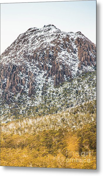 Detail On A Australian Snow Covered Mountain Metal Print