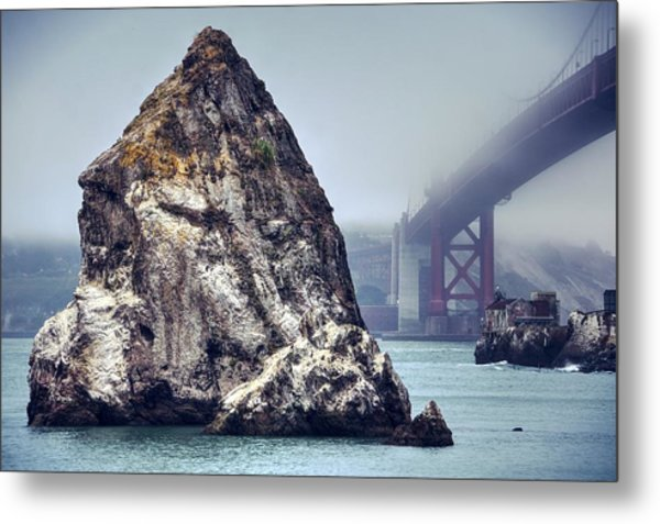 Determined To Rout Her Way Out Of This Fog Metal Print