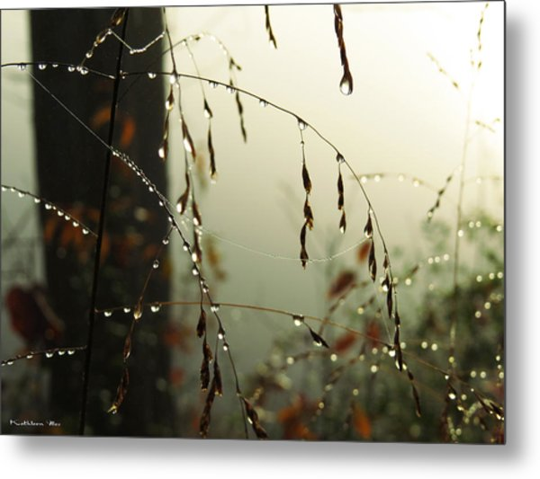 Dew Drop Garland Metal Print