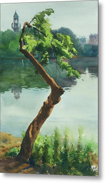 Dhanmondi Lake 03 Metal Print