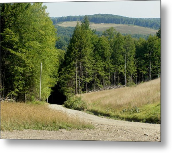 Dirt Road Through The Mountains Metal Print by Jeanette Oberholtzer