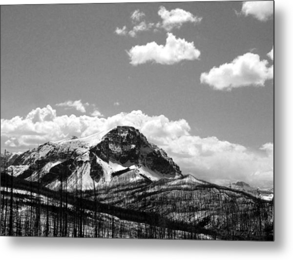 Divide In Blackand White Metal Print