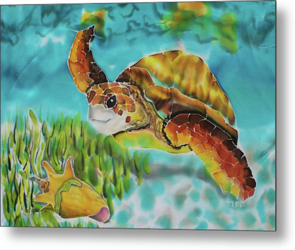 Diving Conch Metal Print