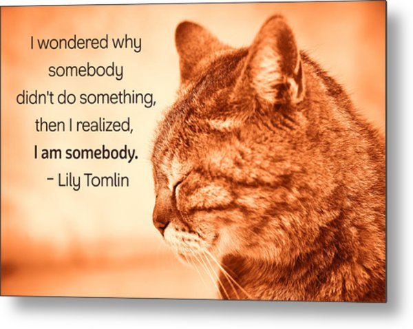 Do Something - Orange Cat Metal Print