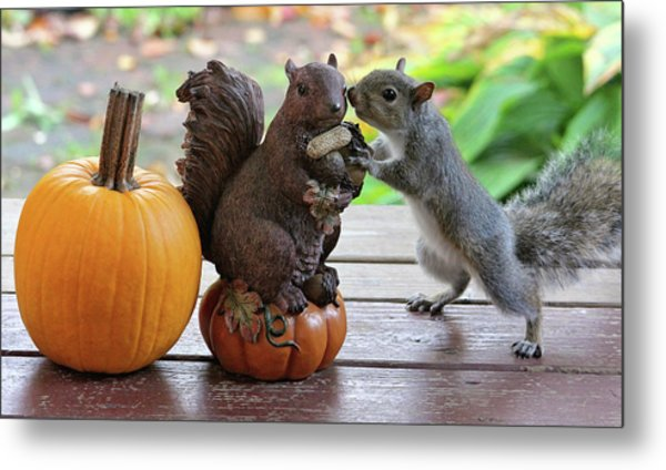 Do You Want To Share? Metal Print