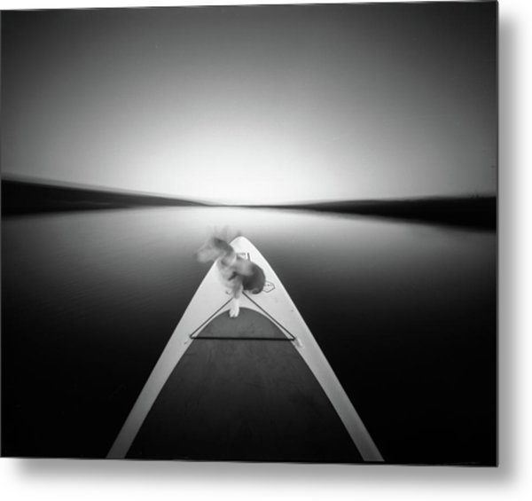 Metal Print featuring the photograph Dog On Sup - Pinhole Photo by Will Gudgeon