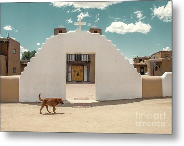 Metal Print featuring the photograph Dog Walk by Sandy Adams