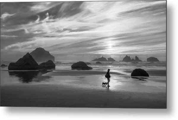 Dog Walker Bw Metal Print