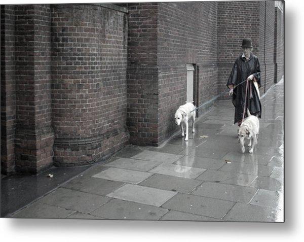 Doggie Strolling 1 Metal Print by Jez C Self