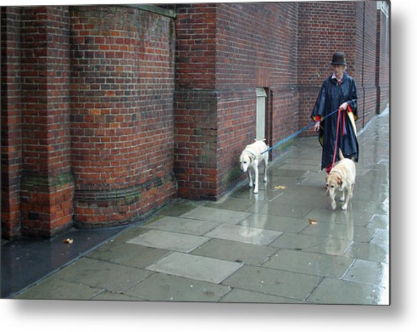 Doggie  Strolling 2 Metal Print by Jez C Self