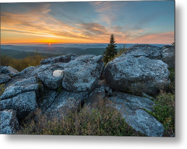 Monongahela National Forest Dolly Sods Wilderness Sunrise Metal Print