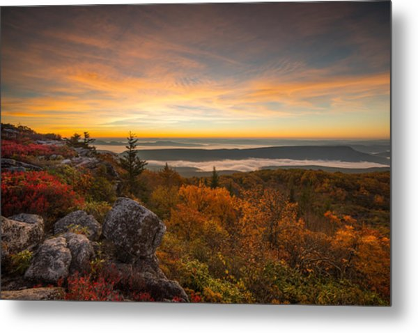 Dolly Sods Wilderness Peak Fall Sunrise Metal Print