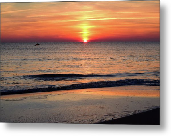 Dolphin Jumping In The Sunrise Metal Print