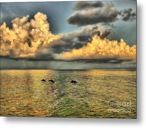 Dolphins Play At Sanibel Island Metal Print