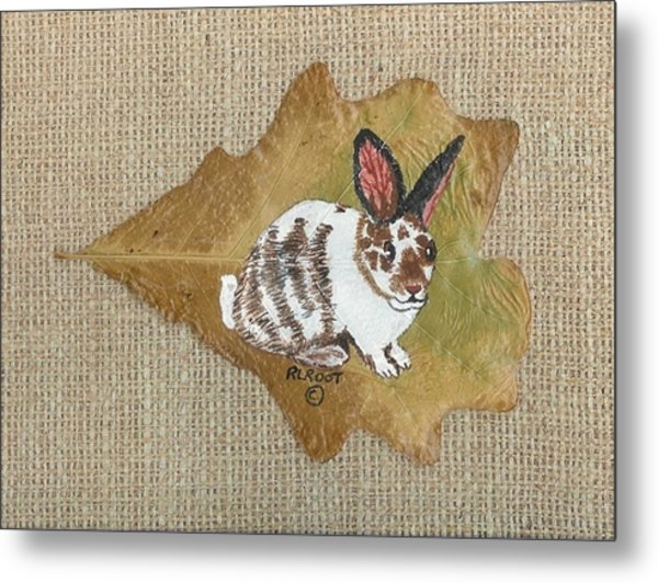 domestic Rabbit Metal Print