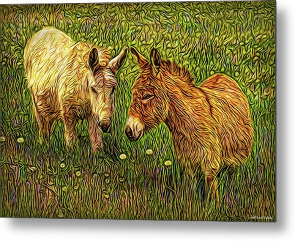 Donkey Confidential Metal Print