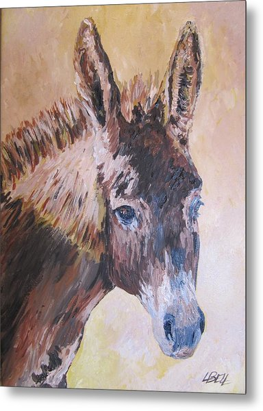 Donkey In The Sunlight Metal Print by Leonie Bell