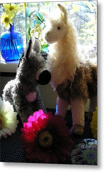 Donkey Joti And Dali Llama Metal Print by Christina Gardner