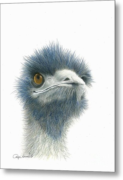 Metal Print featuring the drawing Dont Mess With Emu by Phyllis Howard