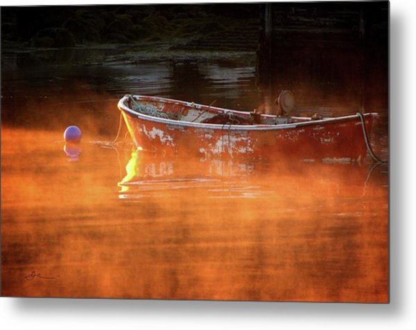 Dory In Orange Mist Metal Print