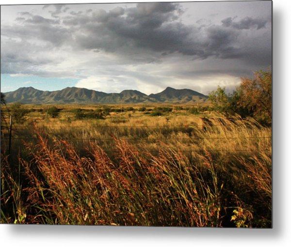 Dos Cabezas Grasslands Metal Print