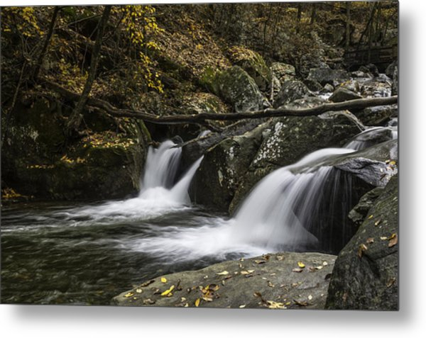 Double Flow Metal Print