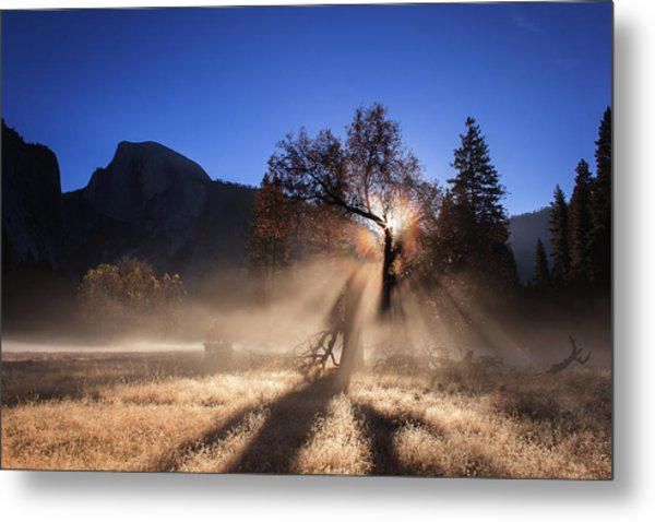 Double Ice Fog Rainbow In Yosemite Valley Metal Print
