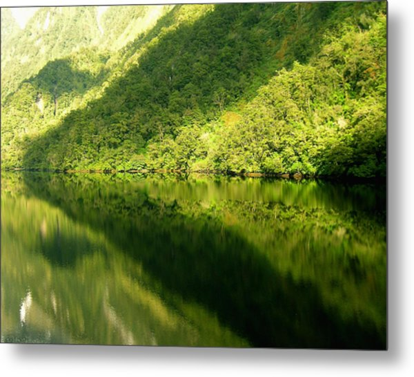 Doubtful Sound, New Zealand No. 4 Metal Print