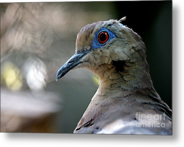 Dovely Metal Print by DiDi Higginbotham