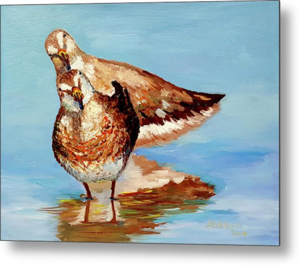 Dowitcher Birds Metal Print