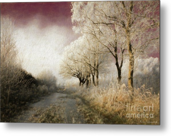 Down Winter Road Metal Print