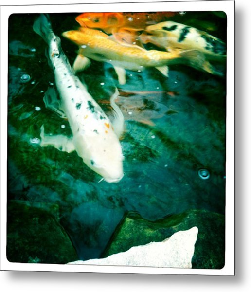 Downstream 2 Metal Print