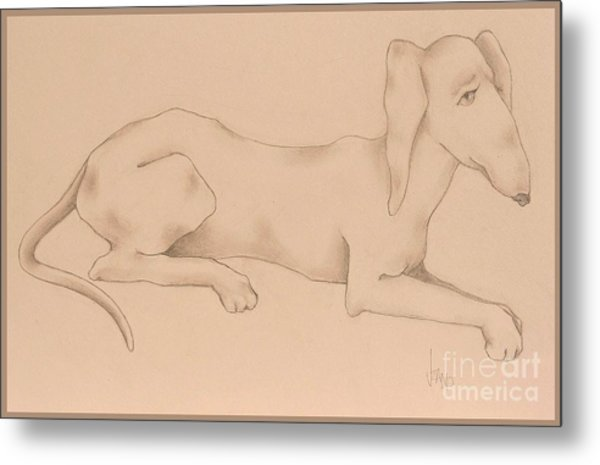 Doxies, Bad To The Bone Metal Print