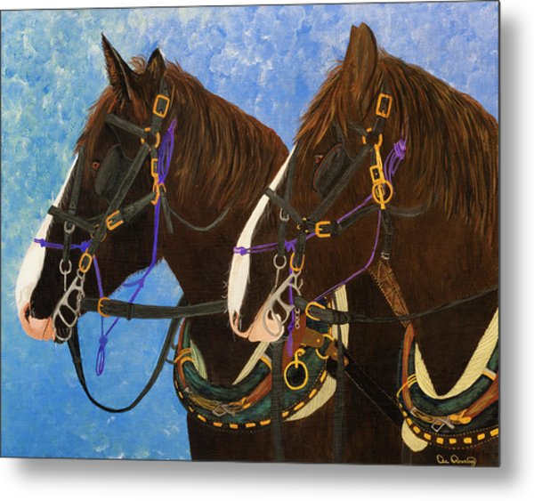Draft Horse Portrait Metal Print