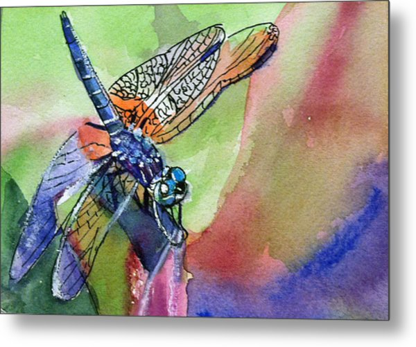 Dragonfly Of Many Colors Metal Print