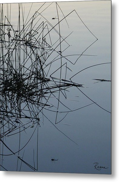Dragonfly Reflections Metal Print