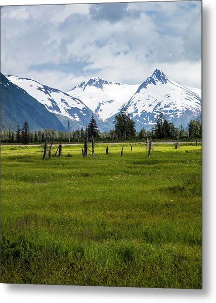 Dramatic Mountains Over A Meadow Metal Print