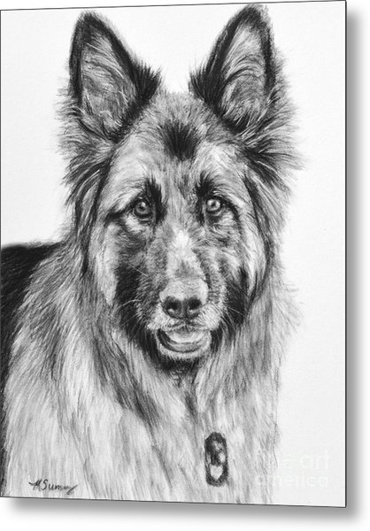 Drawing Of A Long-haired German Shepherd Metal Print