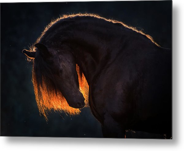 Drawn From The Darkness Metal Print