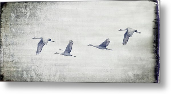 Dream Sequence Metal Print