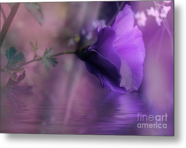 Dreaming In Purple Metal Print