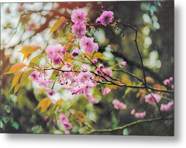 Dreaming Of Spring Metal Print