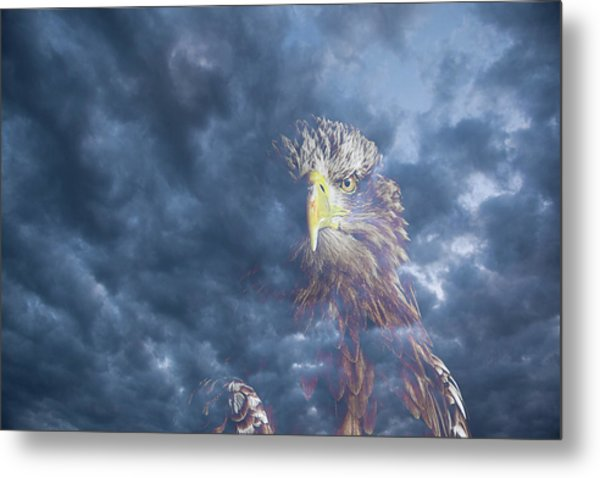 Dreaming Of The Sky Metal Print