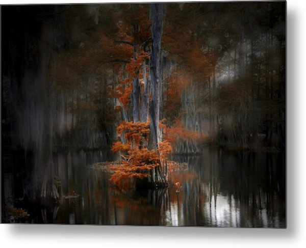 Dreamy Autumn Metal Print by Cecil Fuselier