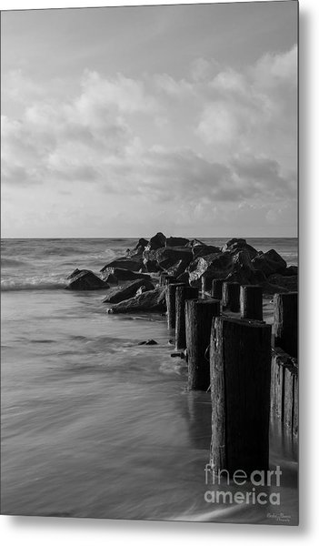Dreamy Jettie Grayscale Metal Print