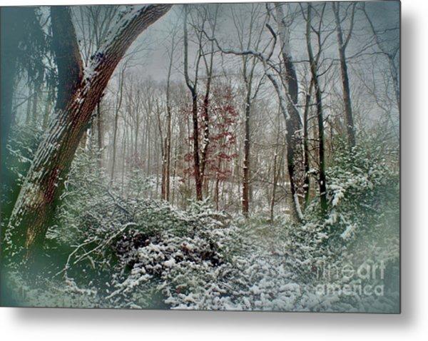 Dreamy Snow Metal Print
