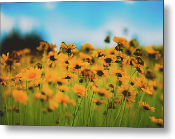 Dreamy Summertime Metal Print