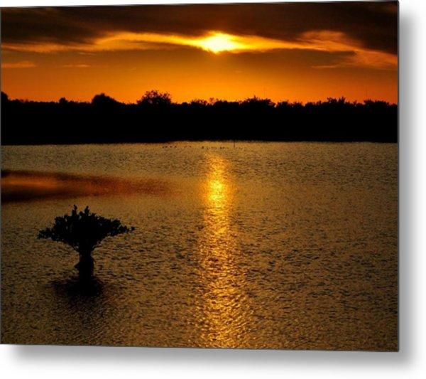Dreamy Sunset Metal Print by Jennifer A Garcia